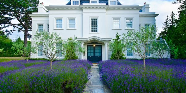 realty-property-mansion-lavender-1600x1121